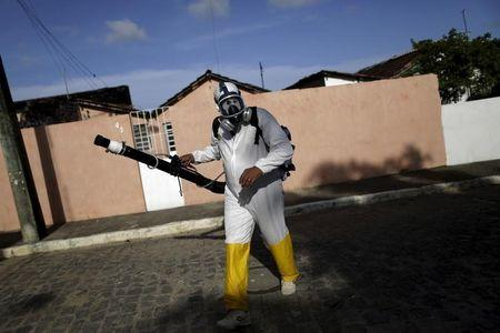 Brazil probes three deaths with Zika links, aims for vaccine in a year