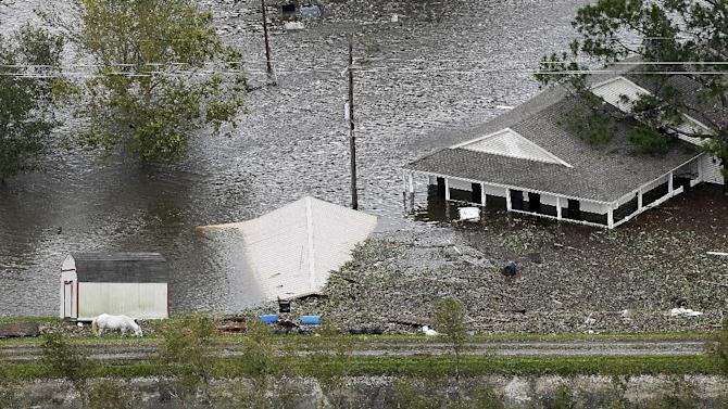 A horse grazes on the levee next to flooded homes after Isaac came through the region, in Braithwaite, La., Thursday, Aug. 30, 2012. Isaac soaked Louisiana for yet another day and pushed more water into neighborhoods all around the city, flooding homes and forcing last-minute evacuations and rescues. (AP Photo/Gerald Herbert)