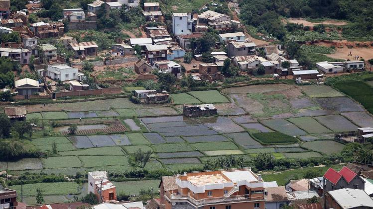 A general view shows rice paddy fields within residential houses in Madagascar's capital Antananarivo
