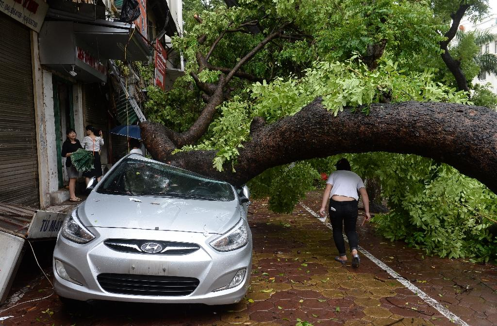 Northern Vietnam struck by powerful storm, one dead