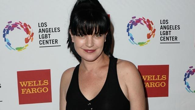 Pauley Perrette Reports Another Scary Encounter With a Transient Months After Attack