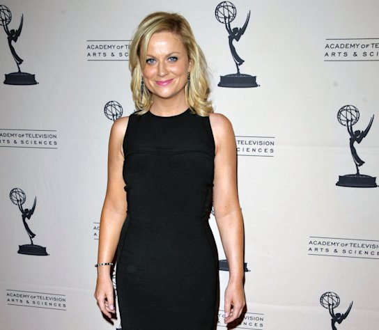 FILE - In this Aug. 20, 2012 file photo, actress Amy Poehler attends the Academy of Television Arts and Sciences&#39; Performers Peer Group Reception at the Sheraton Universal Hotel, in Los Angeles. Television looks like the land of female opportunity with the success of shows like &quot;Girls&quot; and &quot;New Girl&quot; and the achievements of actor-writers including Tina Fey and Lena Dunham. but making TV remains largely man&#39;s work. (Photo by John Shearer/Invision/AP, File)