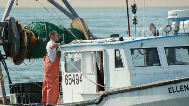 Are government regulations drowning the fishing business?