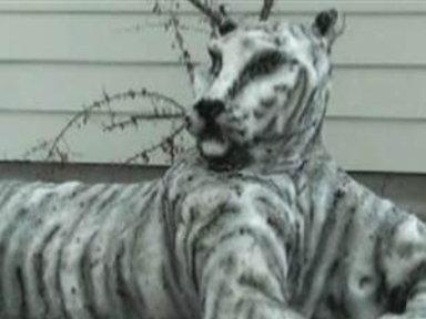Montana Man Sculpts Snow Tiger for Girlfriend