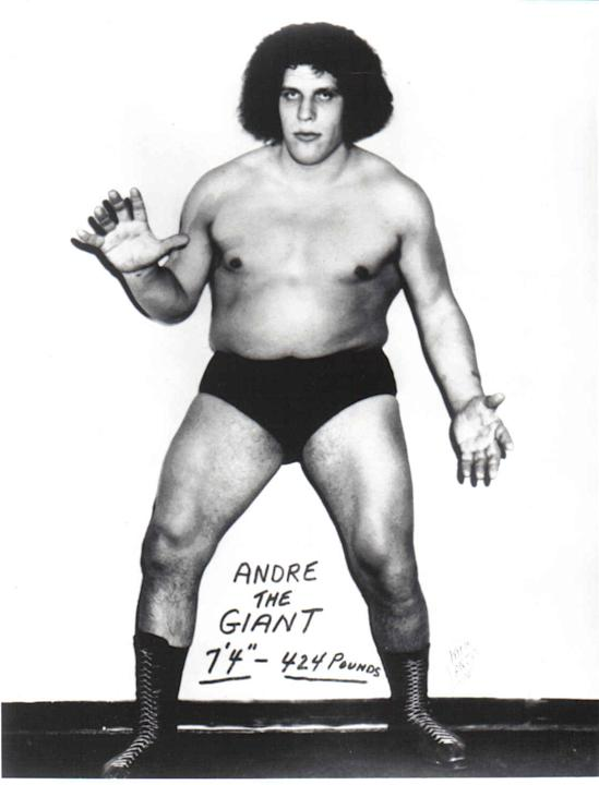 Andre the Giant (RIP) found a super-sized Speedo