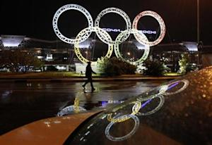 Olympic rings are seen in front of the airport of Sochi, the host city for the Sochi 2014 Winter Olympics