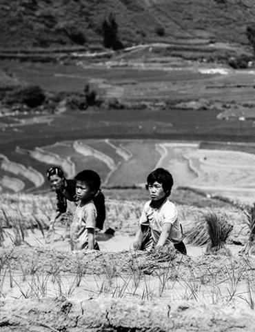 Views of development: APEC Photo Contest 2012 winners