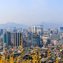 A Love Letter To Seoul