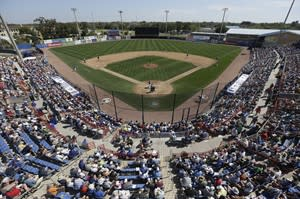 Baseball fans watch an exhibition spring baseball game between the Toronto Blue Jays and the Baltimore Orioles, Saturday, March 16, 2013, in Dunedin, Fla. (AP Photo/Carlos Osorio)