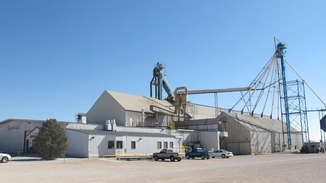 FILE - This Nov. 27, 2012 file photo shows the Sunland Inc. peanut butter and nut processing plant in eastern New Mexico, near Portales, which has been shuttered since late September due to a salmonella outbreak that sickened dozens. It's about to get faster and easier to diagnose food poisoning _ but that progress for individual patients comes with a downside: It could hurt the nation's ability to spot and solve dangerous outbreaks. Next-generation tests that promise to shave a few days off the time needed to tell if E. coli, salmonella or other foodborne bacteria are to blame for a patient's illness could reach medical laboratories as early as next year. (AP Photo/Jeri Clausing, File)