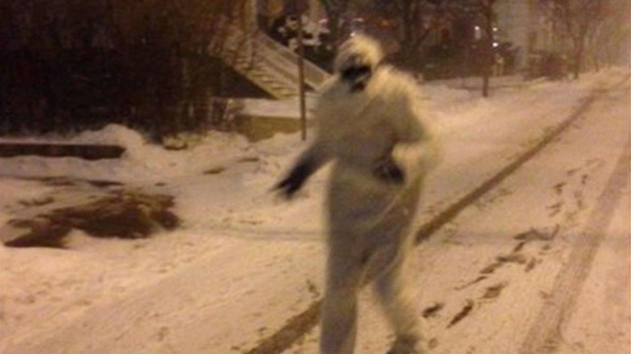 Blizzard 2015: Yeti Seen Prowling the Streets Near Boston