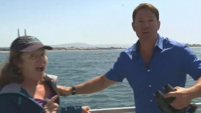 TV Host Loses It as Blue Whale is Captured Live on Air For the First Time Ever