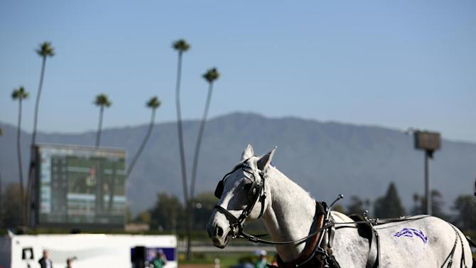 A general view on Day 2 of the Breeders' Cup World Championships on Saturday Nov. 3,  2012, in Arcadia, Calif.  (Photo by Matt Sayles/Invision for Breeders' Cup/AP Images)