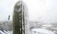 Arizona Desert Snow Thwarts Top Golfers