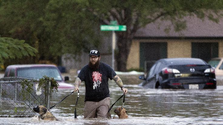A man walks with two dogs through floodwaters on Quicksilver Boulevard in Austin, Texas, on Thursday, Oct. 31, 2013, after heavy overnight rains brought flooding to the area. The National Weather Service said more than a foot of rain fell in Central Texas, including up to 14 inches in nearby Wimberley, since rainstorms began Wednesday. (AP Photo/The Austin American-Statesman, Deborah Cannon)