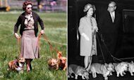 Corgi Sales Boosted By Royal Jubilee Fever