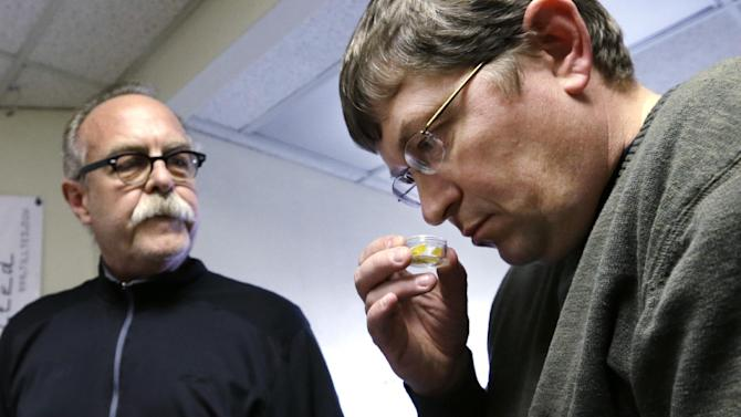 FILE - In this Thursday, April 4, 2013 file photo, Mike Steenhout, comptroller of Washington's Liquor Control Board, right, sniffs butane hash oil, a product extracted from marijuana plants, as Jim Andersen watches at a marijuana growing facility in Seattle. After months of intensive research, public meetings and public reaction, state officials on plan to release their draft rules governing Washington's new legal marijuana industry on Thursday, May 16, 2013. (AP Photo/Elaine Thompson, File)