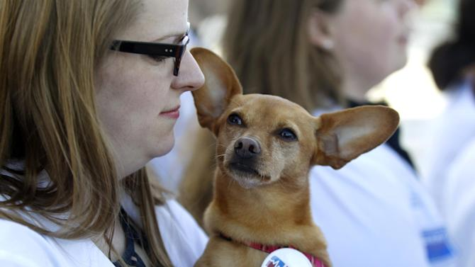Georgetown University Medical Student Kate Prather, who supports the health care reform law signed by President Barack Obama, holds her dog Ellie as she stands in front of the Supreme Court in Washington, Monday, March 26, 2012, as the court begins three days of arguments on health care. (AP Photo/Charles Dharapak)