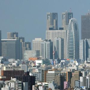 Investors Take the Soft Approach in Japan