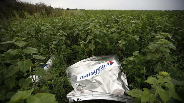 File photo of debris from a Malaysian Airlines Boeing 777 that crashed on Thursday on the ground near the village of Rozsypne in the Donetsk region