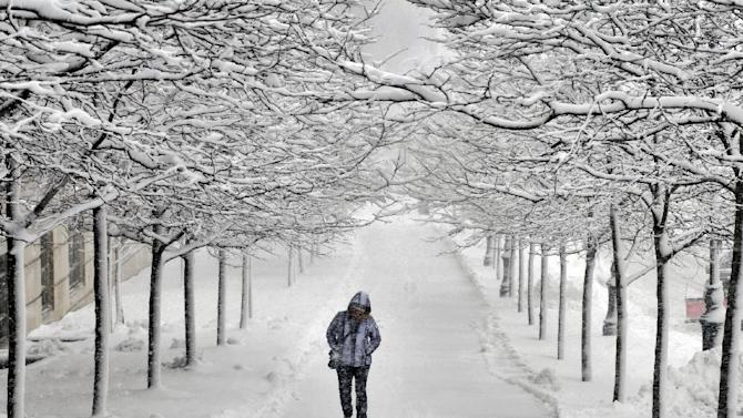 A pedestrian walks between rows of snow-covered trees on Martin Luther King Jr. Blvd. in Worcester, Mass. during a snowstorm on Friday, Feb. 5, 2016. (Paul Kapteyn/Worcester Telegram & Gazette via AP)