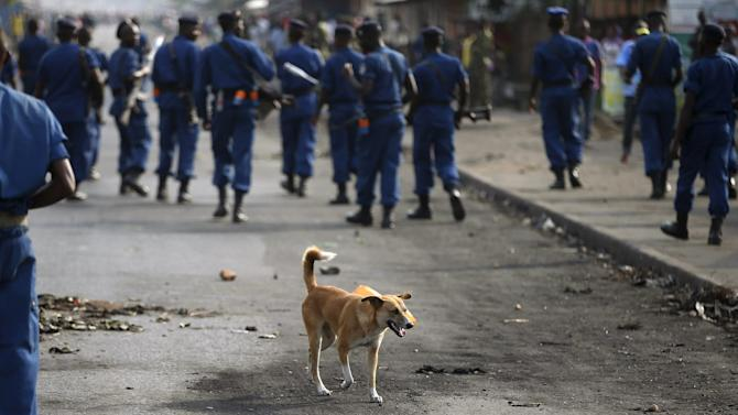 Dog walks behind policemen during a protest against Burundi President Pierre Nkurunziza and his bid for a third term in Bujumbura