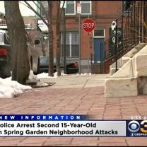 2nd Teen Arrested In Spring Garden Attacks
