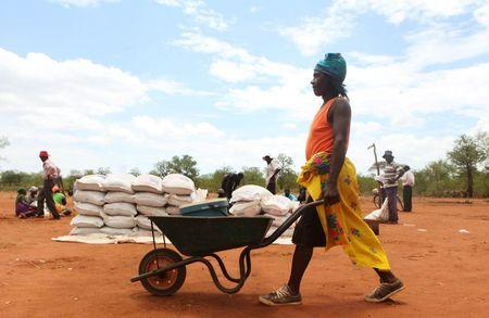 A villager uses a wheelbarrow to collect a monthly food ration provided by the United Nations World Food Programme in Masvingo, Zimbabwe