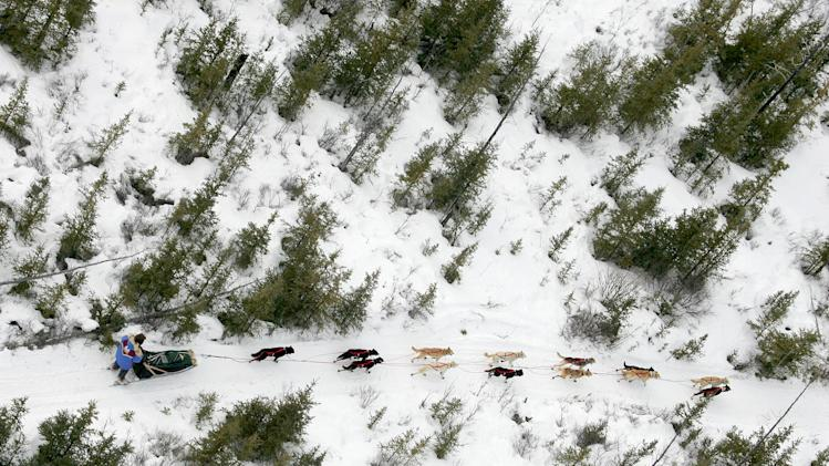 FILE - A musher drives his team along the Iditarod Trial Sled Dog Race through the trees on the Farewell burn area near Nikolai, Alaska Tuesday, March 8, 2005. (AP Photo/Al Grillo, File)