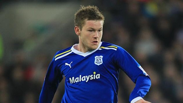 Cardiff City's Aron Gunnarsson (PA Photos)