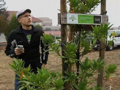 App Helps Find the Forest in the City