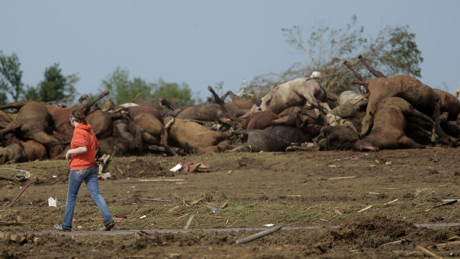 A woman walks past a pile of dead horses that were killed in a tornado a day earlier Tuesday, May 21, 2013, in Moore, Okla. A huge tornado roared through the Oklahoma City suburb Monday, flattening entire neighborhoods and destroying an elementary school with a direct blow as children and teachers huddled against winds. (AP Photo/Charlie Riedel)