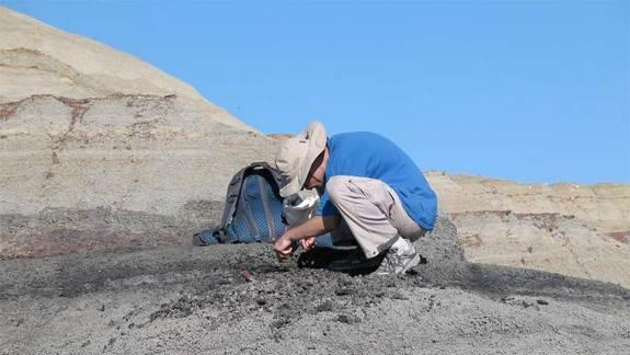 Asteroid Impact That Killed the Dinosaurs: New Evidence