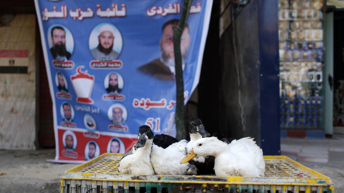 "FILE - In this Monday, Dec. 12, 2011 file photo, Ducks are displayed for sale by a street vendor, unseen, near an electoral poster that reads in Arabic, ""the list of al-Nour Party,"" at a street in Cairo. Egypt's largest ultraconservative Islamist party, which has emerged as a potent political force in the country, elected a new leader on Wednesday after the previous head with dozens of other members broke away to form their own political group following months of infighting. (AP Photo/Nasser Nasser, File)"