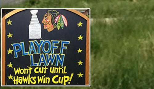 2013 Stanley Cup Final: Chicago Blackhawks fans had his lawn mowed by the city