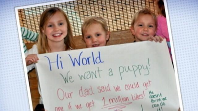 Kids Will Get Puppy After Facebook Campaign for 1 Million Likes