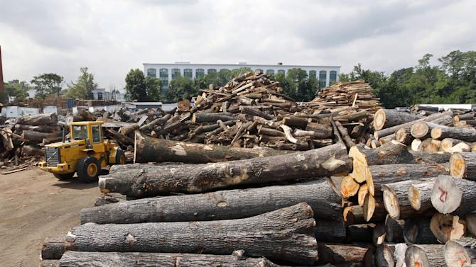 In this Wednesday, Aug. 15, 2012 photo, a worker maneuvers a loader machine through huge stacks of discarded tree trunks to be cut into lumber at Citilog, in Newark, N.J. The Newark company takes unwanted trees from the so-called urban forest — parks, yards, streets and wherever else a tree might grow in a city — and turns them into furniture, flooring and other materials. (AP Photo/Mel Evans)
