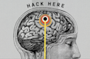 The Big Future: Can we build a better brain?