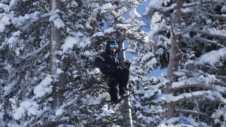 A ski coach from the Austrian team perches high in a tree to watch during a training run for the men's World Cup Downhill ski race in Beaver Creek