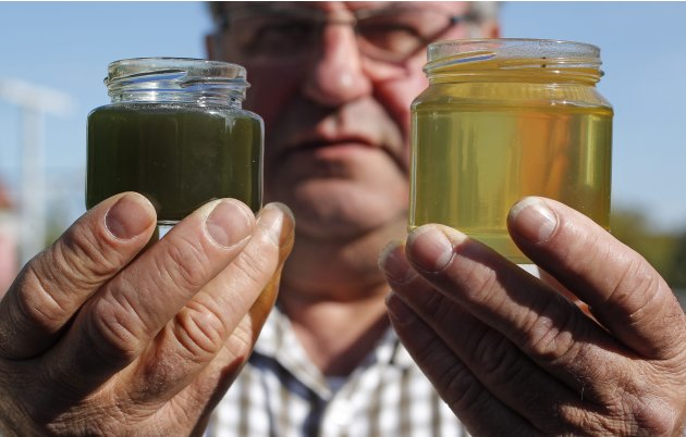 French beekeeper Frieh holds a sample of honey besides a green coloured one at his home in Ribeauville