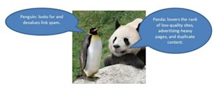 The 10 New Rules for SEO image penguin and panda captioned 1 700x287
