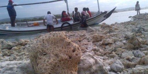 Pulau karang tiba-tiba muncul di tengah laut Madura