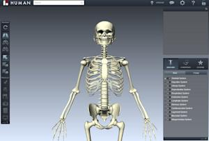Virtual Human Body Changes How Medical Students Learn