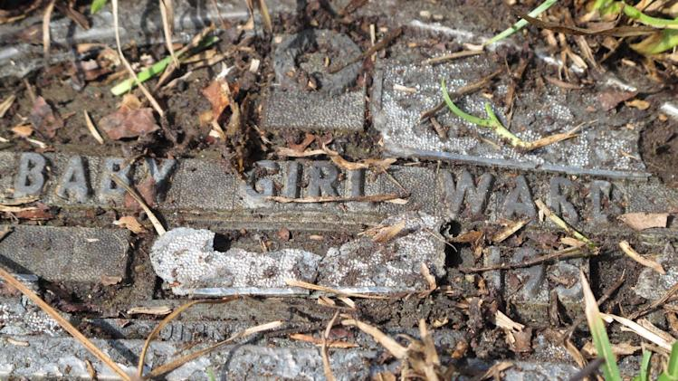 "A crumbling tin plaque marks the grave of an infant buried during the 1950s in the ""Babyland"" section of Onslow Memorial Park in Jacksonville, N.C. on Wednesday, Feb. 27, 2013. Mary Blakely, a Marine's daughter, has scoured this and other cemeteries for the names of children who may have died because of contaminated water at nearby Camp Lejeune. (AP Photo/Allen Breed)"