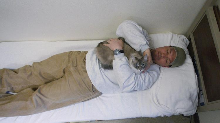 Inmate Richard Amaro holds Clementine in his 12-by-10-foot cell, which resembles a dormitory room, at Larch Correctional Facility Friday, April 20, 2012, in Yacolt, Wash.  The Cuddly Catz program at the Larch Correctional Facility, a minimum-security prison is several months old, but inmates say they've already noticed a difference in the cats and themselves. The program began in cooperation with a local animal shelter. It has grown to include two cats and four inmates, and the prison plans to add four more cats. (AP Photo/Rick Bowmer)