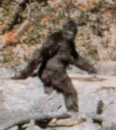 Spike TV Offers $10M for Proof of Bigfoot's Existence