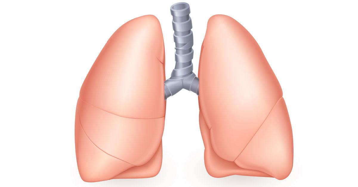 Breathe Easier And Regenerate Your Lungs