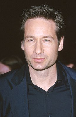 Premiere: David Duchovny at the premiere of MGM's Return To Me - 2000