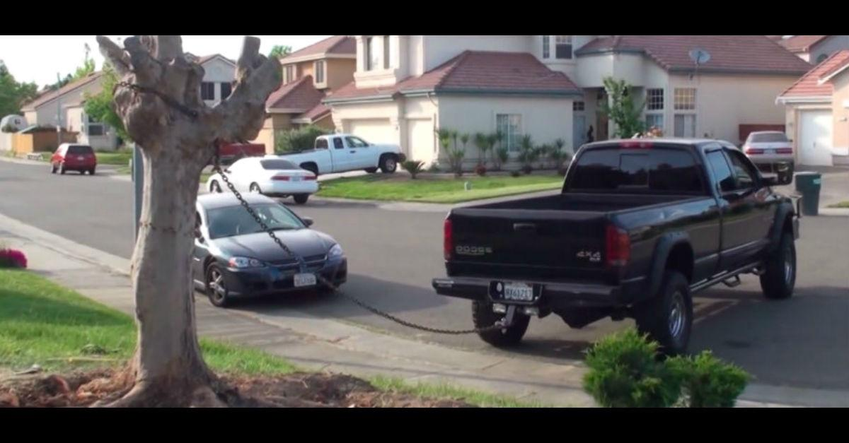 """Truck vs Tree"" Watch What Happens Next!"