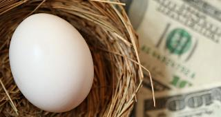 Egg in nest with money copyright Margie Hurwich/Shutterstock.com